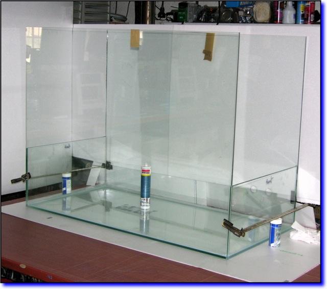 Aquaterrarium de Patrice_B Terra013