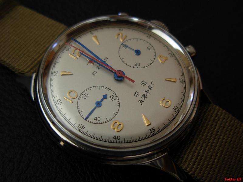 Feu de vos montres à aiguilles bleues Dscn1201