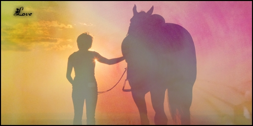 Sorties & Entraînements des chevaux. [Chup's] Signat37