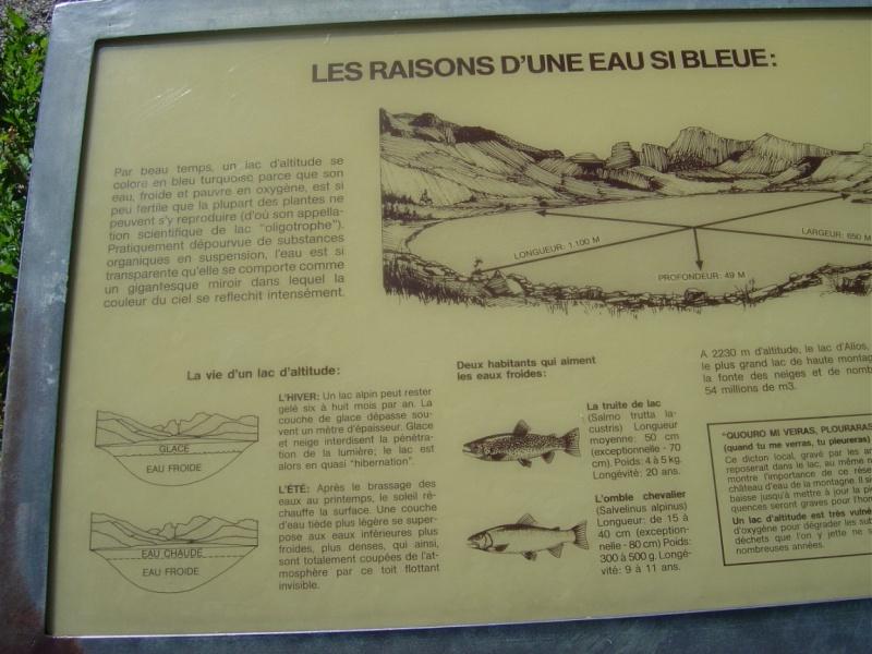 Lac d'Allos 2200 Lac_d_18