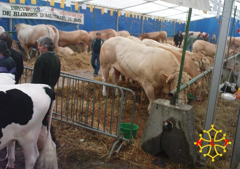 50eme Foire agricole de Réalmont (81) 4 & 5 Avril 2009 1611