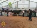 50eme Foire agricole de Réalmont (81) 4 & 5 Avril 2009 1010