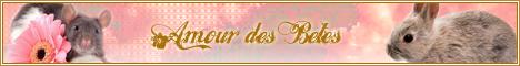 Amour Des Bêtes Adb46810