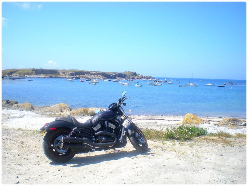 Passion : Moto Nightr19
