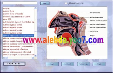 المعجم الطبي الموحد مع صور من البرنامج 410