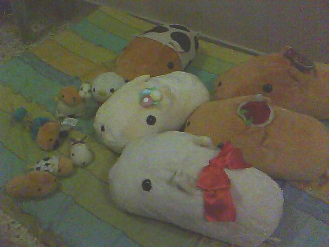 开心果 HAPPY~ Pic09020