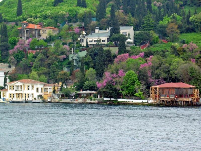 صور استانبول Bagazi10