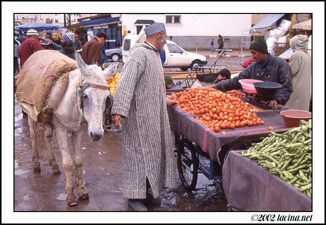 ... Portraits marocains 1_603310