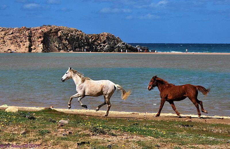 Voyage au Maroc 416