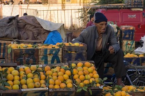 ... Portraits marocains 91669510