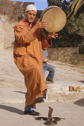 ... Portraits marocains 96721810