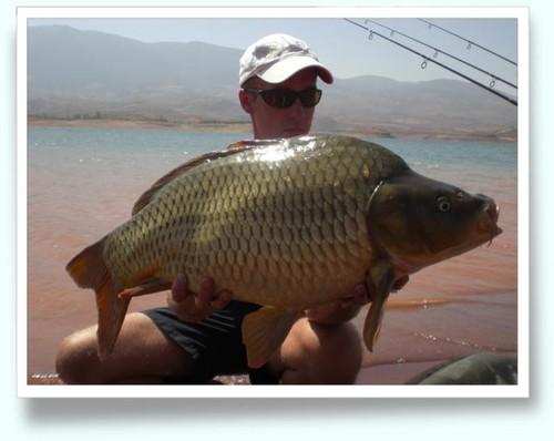 Le lac  BIN EL OUIDANE Carpe11