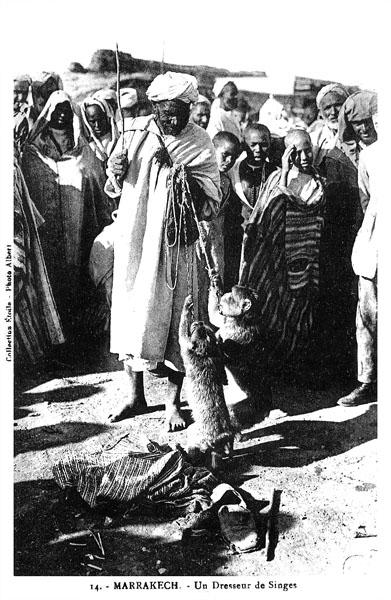 Les vieux métiers marocains... Dresse10