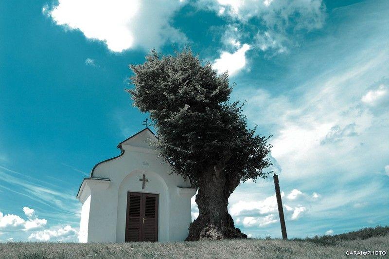 ... Bonne journée à Toussssssssss Eglise10