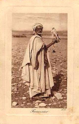 Les vieux métiers marocains... Faucon11