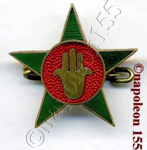 ..Quelques insignes marocains Gao_1510
