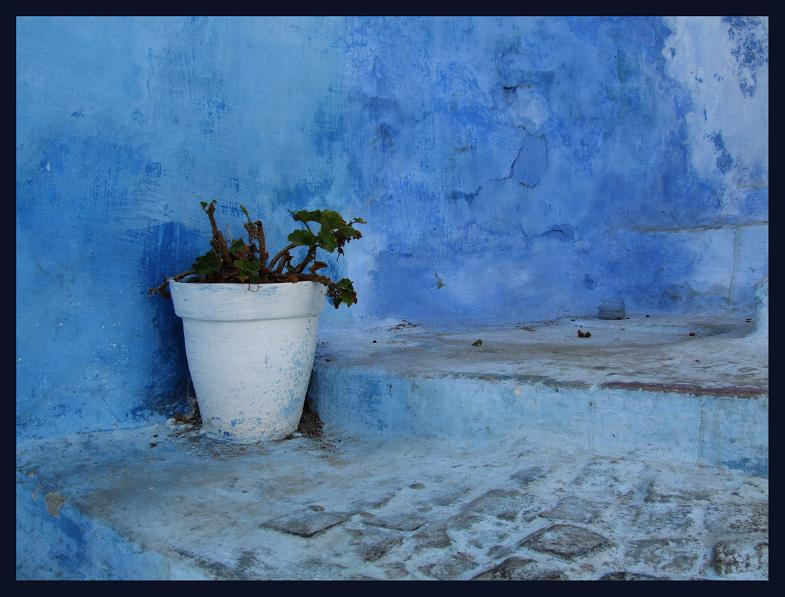 Bonne journée à Tous ... Rabat10