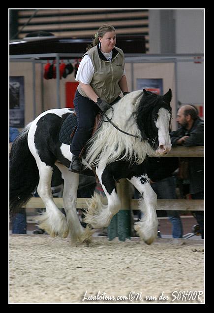 Une photo de vous et votre cheval - Page 5 Moi210