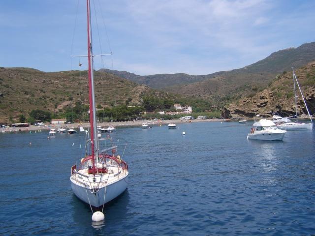 [ Associations anciens Marins ] Sortie en mer A.A.M.A.C Prades et Le Boulou Sta50048