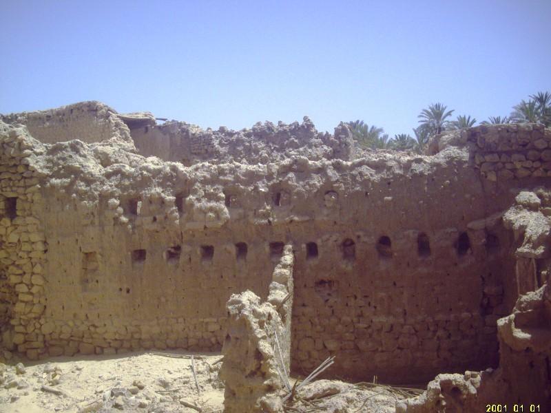 صور لغابات و آثار منطقة نقرين 14393110