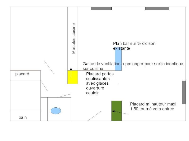 Organisation d un appartement, suppression de cloisons et creations de placards Steph_10