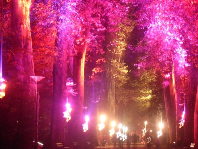 Illumination parc orangerie Dsci0012
