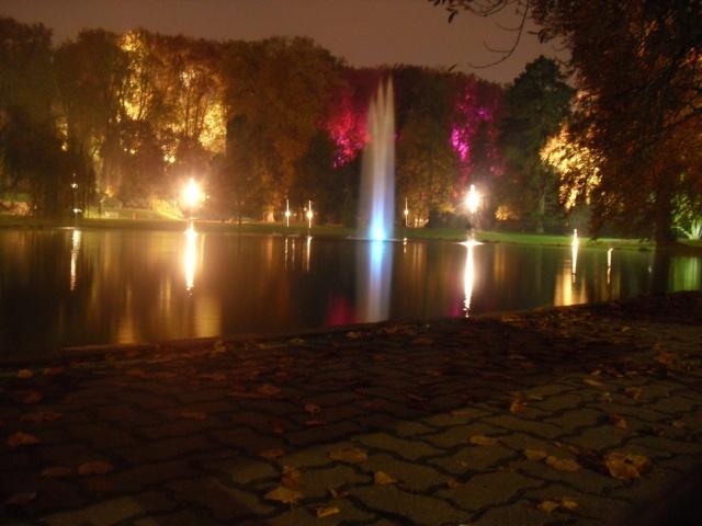 Illumination parc orangerie Dsci0014