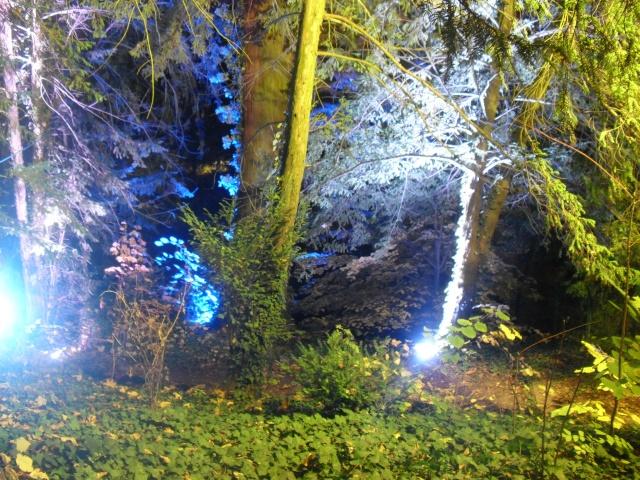 Illumination parc orangerie Dsci0015