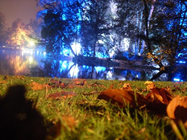 Illumination parc orangerie Dsci0016