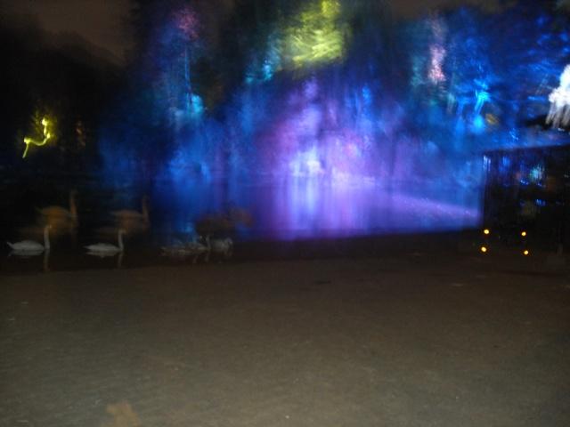 Illumination parc orangerie Dsci0017
