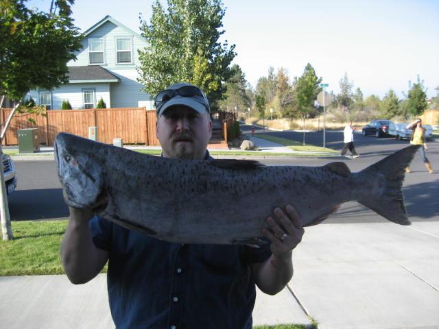 The Salmon..... Columb10