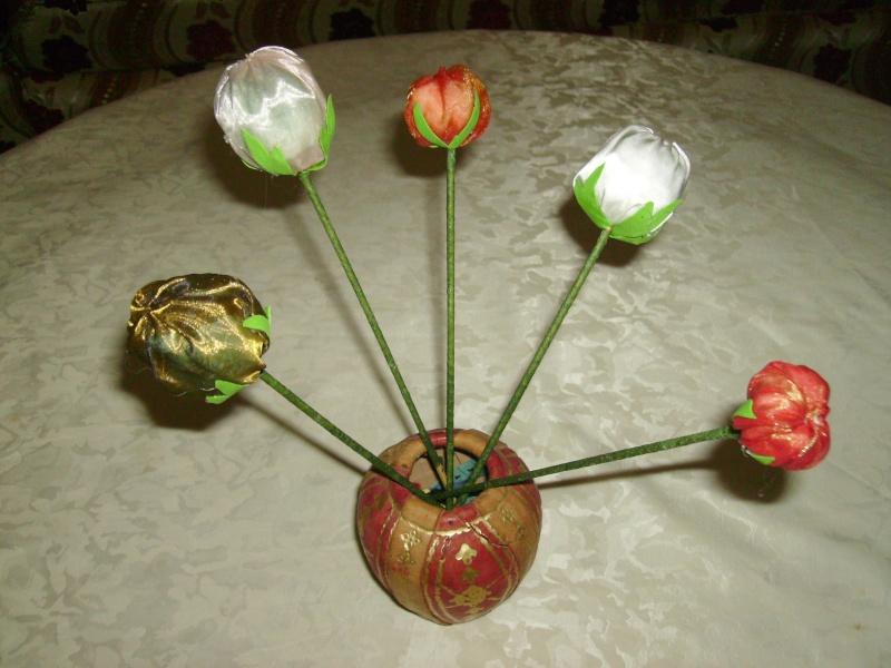fruits et fleurs de lilas en février Mes_cr20
