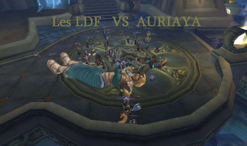 Les LDF - Portail Auriay10