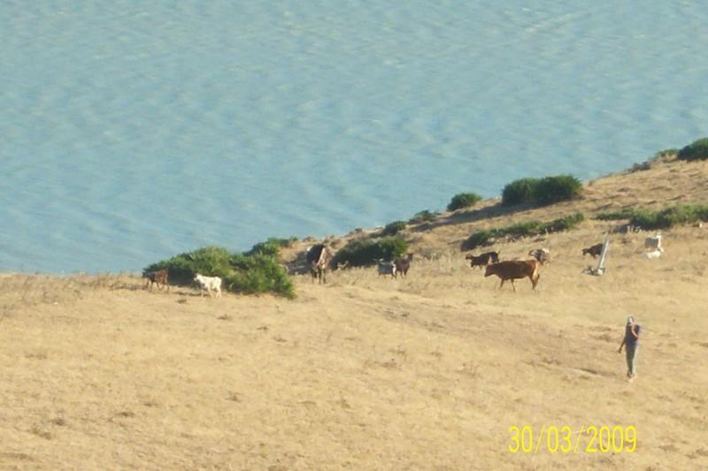 Voyage au Maroc 100_0914