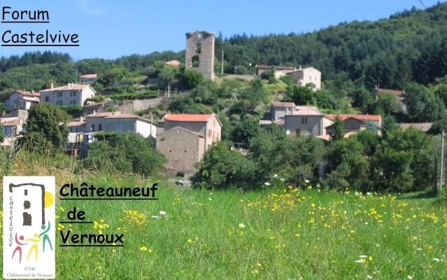 Forum Castelvive