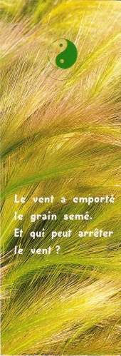 Proverbes - citations -  jolies phrases - pensées Numa2724