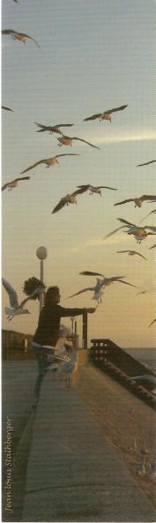 la mer et les marins - Page 2 Numa3436