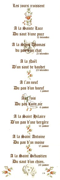 Proverbes - citations -  jolies phrases - pensées Numa3784