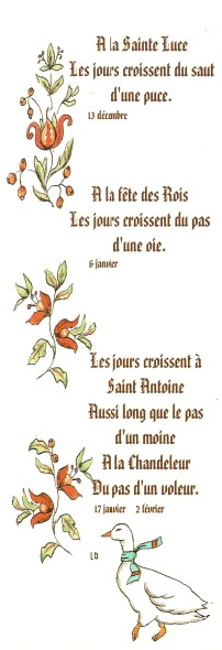 Proverbes - citations -  jolies phrases - pensées Numa3796