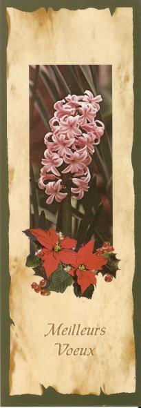 Joyeuses Fêtes en Marque Pages Numa4934