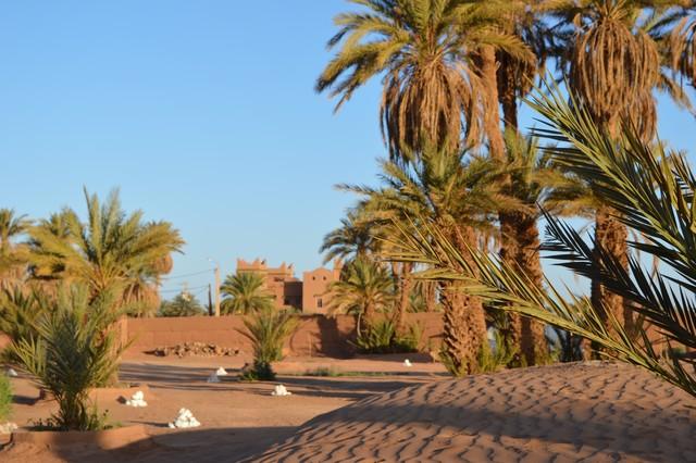 [Maroc Camp/Découvertes]  Un nouveau coup de cœur... Camping Esprit Désert Dsc_0219