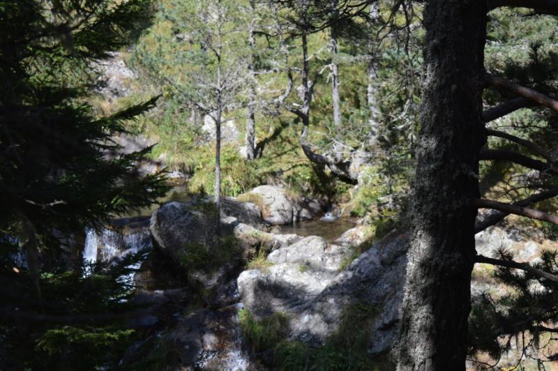 [Autres voyages/France] Balades dans le Capcir( Pyrénées Orientales) - Page 2 Dsc_0282