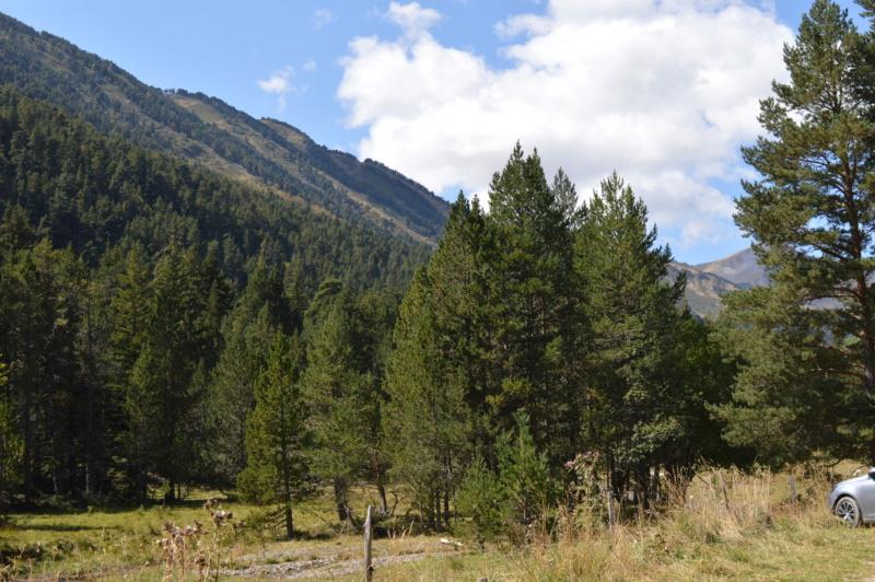 [Autres voyages/France] Balades dans le Capcir( Pyrénées Orientales) - Page 2 Dsc_0289