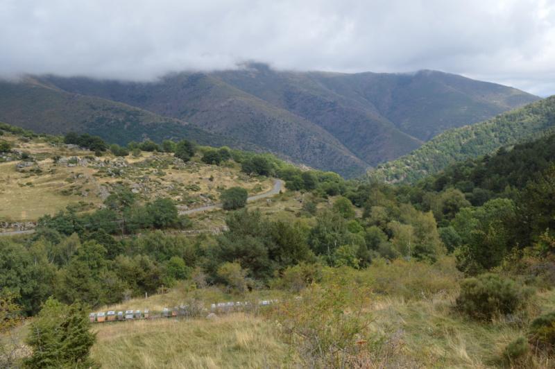 [Autres voyages/France] Balades dans le Capcir( Pyrénées Orientales) - Page 2 Dsc_0364