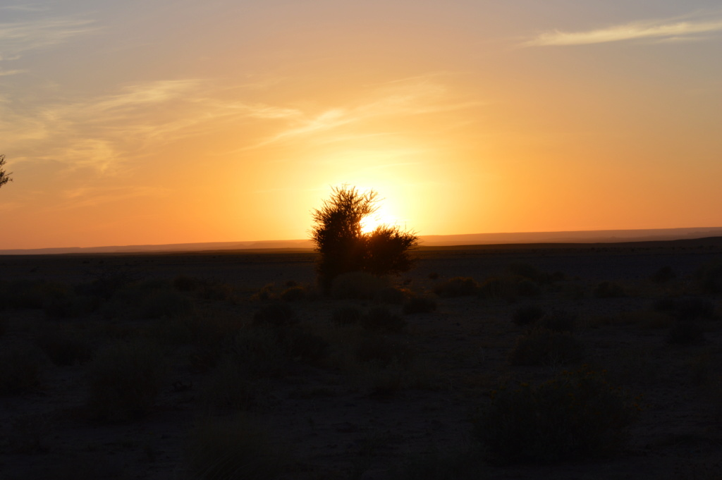[nos beaux pays : la France, le Maroc et .....  le Monde] Couchers de soleil - Page 10 Dsc_0545