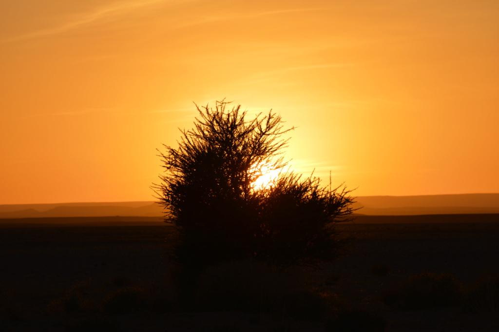 [nos beaux pays : la France, le Maroc et .....  le Monde] Couchers de soleil - Page 10 Dsc_0546