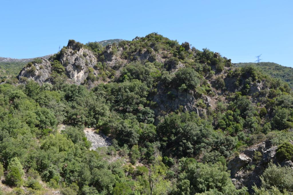 [Autres voyages/France] Balade dans les Hautes Corbières Dsc_0649