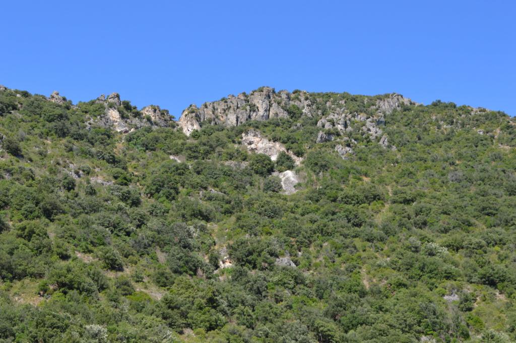 [Autres voyages/France] Balade dans les Hautes Corbières Dsc_0651