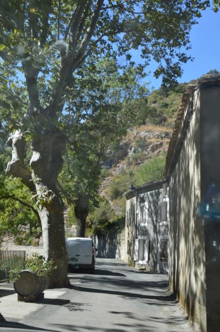 [Autres voyages/France] Balade dans les Hautes Corbières Dsc_0656