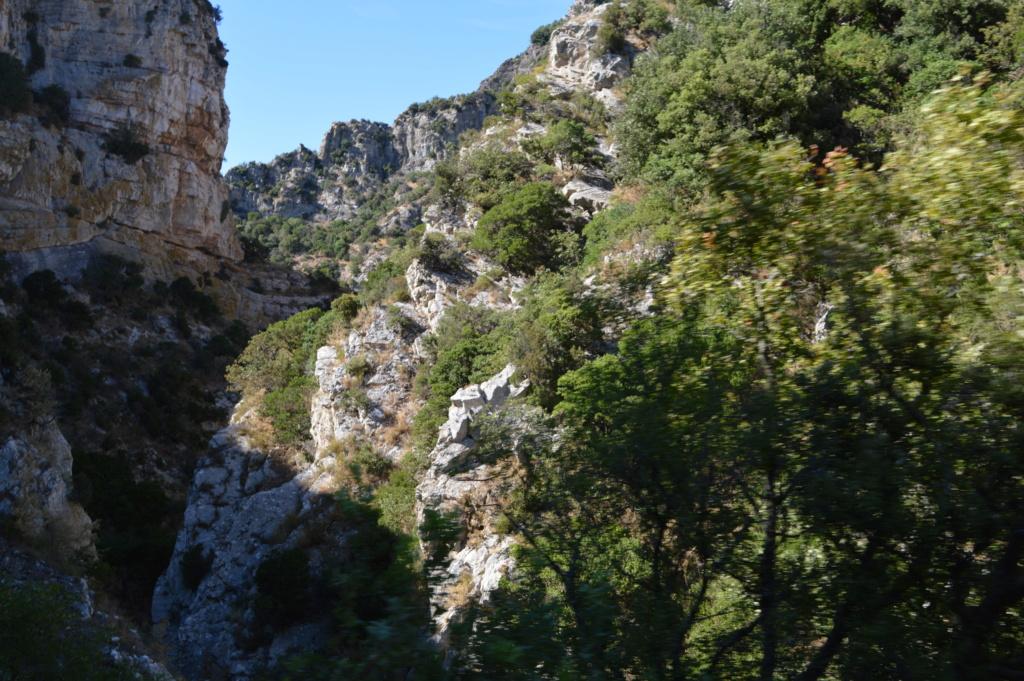 [Autres voyages/France] Balade dans les Hautes Corbières Dsc_0661